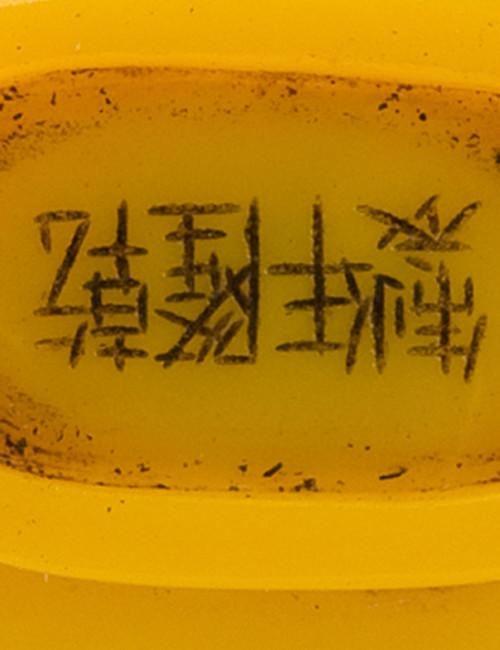 Qianlong Nian Zhi