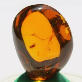 Burmite Amber - SM11