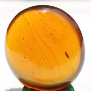 Burmite Amber - SM6