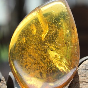 Extremely Rare Amber Gemstone - UN2
