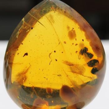 Rare Amber Gemstone - UN4