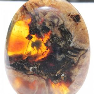 Rare Burmite Amber - UN10